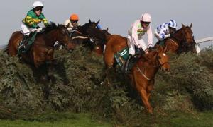 Grand National 2011