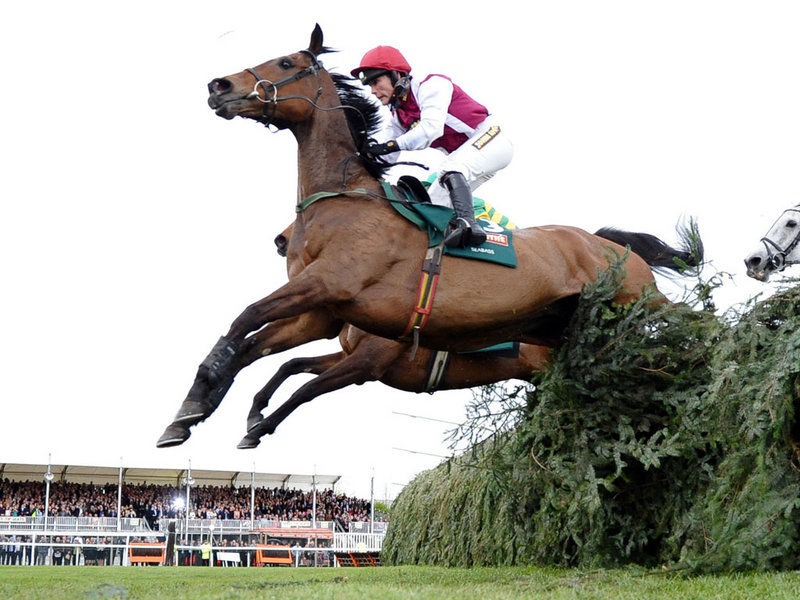 riders and runners grand national