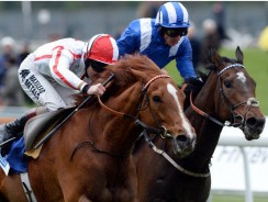 Sunday's Racing Tip: 5/1 Justineo can nick a front running success at York