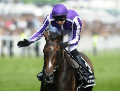 Prix de l'Arc de Triomphe : Betting odds suggest easy win for Camelot and Aiden O Brien