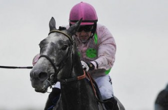The Arkle Tips : Champagne Fever bidding for third Cheltenham Festival win