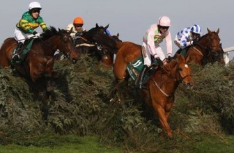 Grand National Each Way Horses to Back