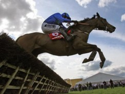 Champion Hurdle Tips: Hurricane Fly attempts to join the greats in battle with The New One