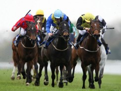 Wednesday's Racing Tip: 6/1 Minalisa looks a work of art at Naas