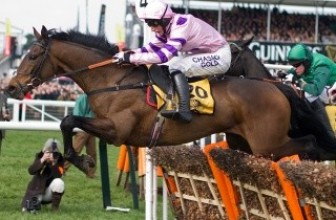Champion Hurdle Tips & Odds 2014 : Hurricane Fly or The New One?